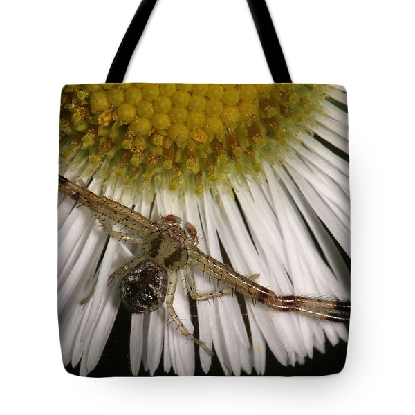 Flower Spider On Fleabane Tote Bag