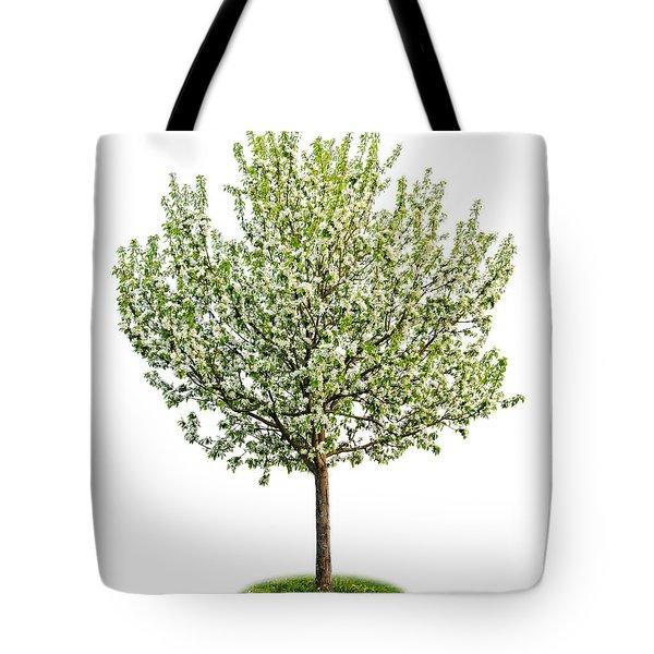 Flowering Apple Tree Tote Bag by Elena Elisseeva