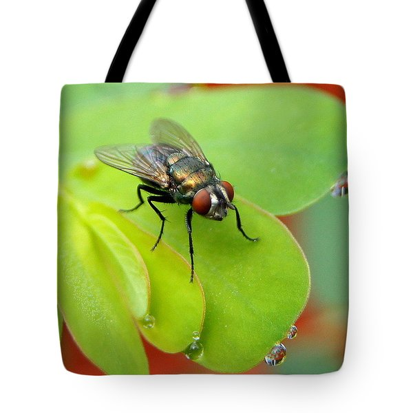 Fly After The Rain Tote Bag by Paul  Wilford
