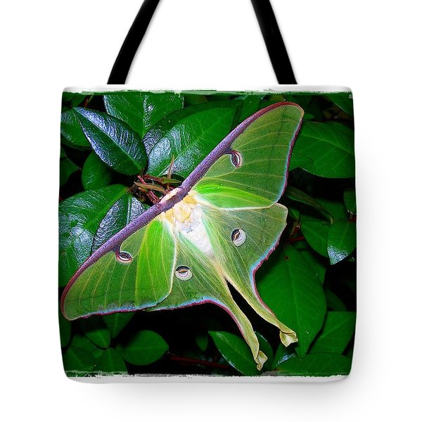 Fly Me To The Moon Tote Bag by Judi Bagwell