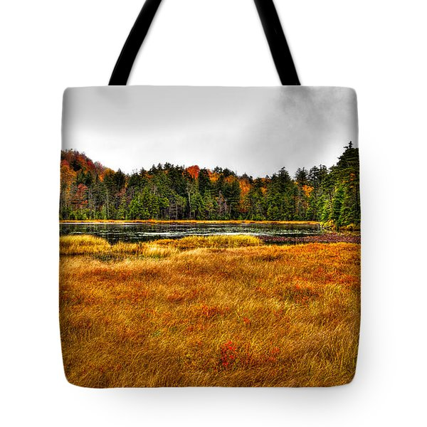 Fly Pond On Rondaxe Road Tote Bag by David Patterson