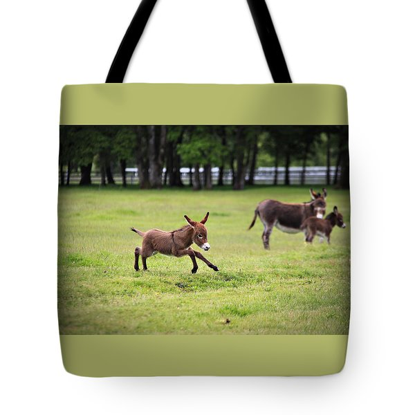 Flying Abbey Tote Bag