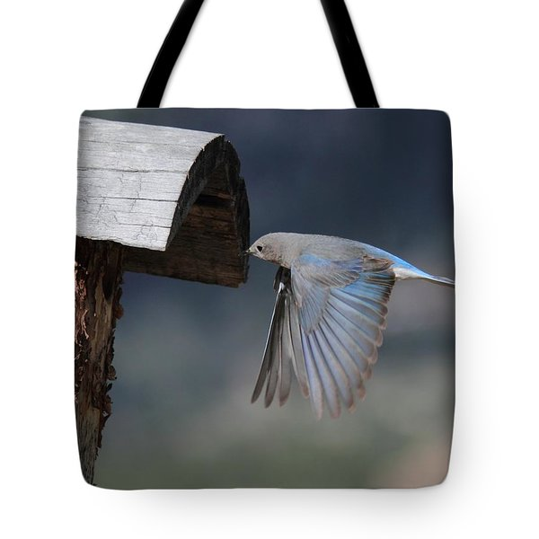 Flying Around Tote Bag by Shane Bechler