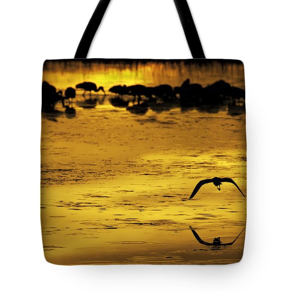 Flying Home - Florida Wetlands Wading Birds Scene Tote Bag by Rob Travis