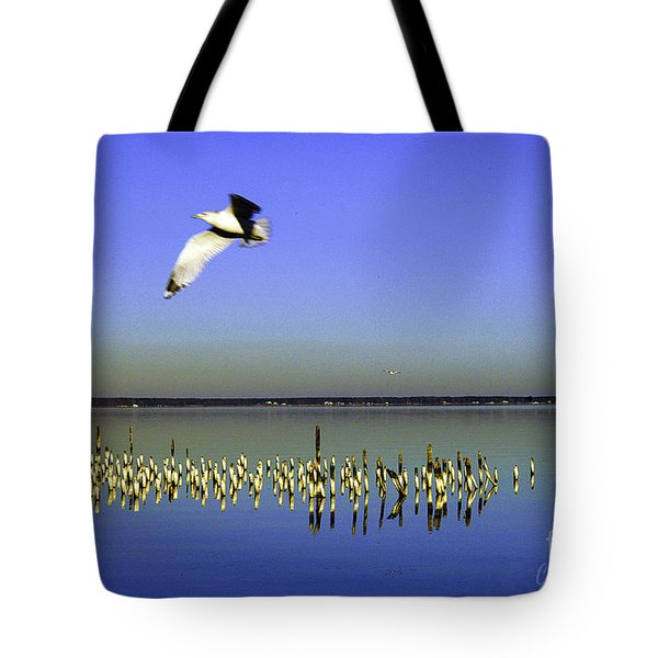 Tote Bag featuring the photograph Flying Solo by Clayton Bruster
