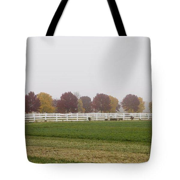 Foggy Fall Tote Bag by Joel Witmeyer