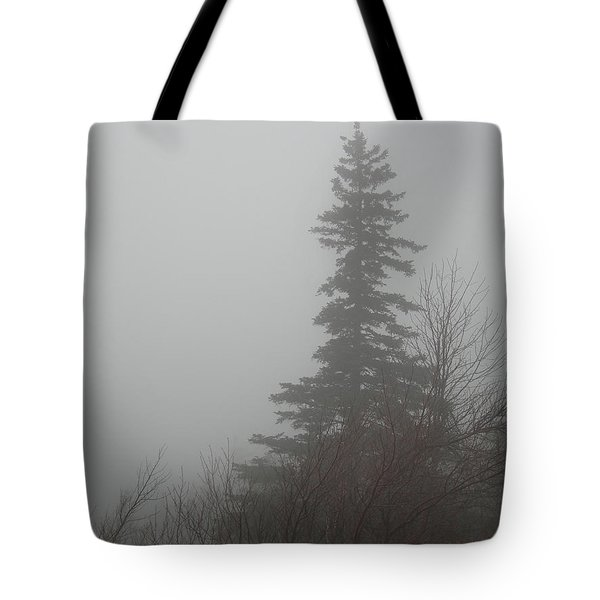 Foggy Sentinel Tote Bag by Skip Willits