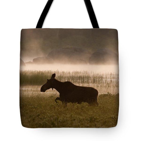 Foggy Stroll Tote Bag by Brent L Ander