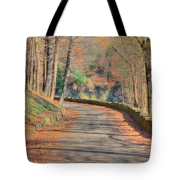 Follow The Path Tote Bag by Kathleen Struckle