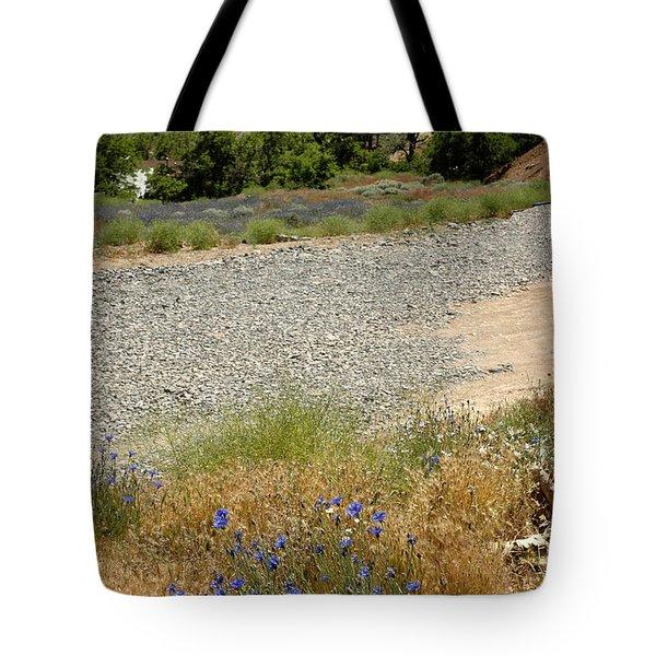 For Purple Mountain Majesties Tote Bag by LeeAnn McLaneGoetz McLaneGoetzStudioLLCcom