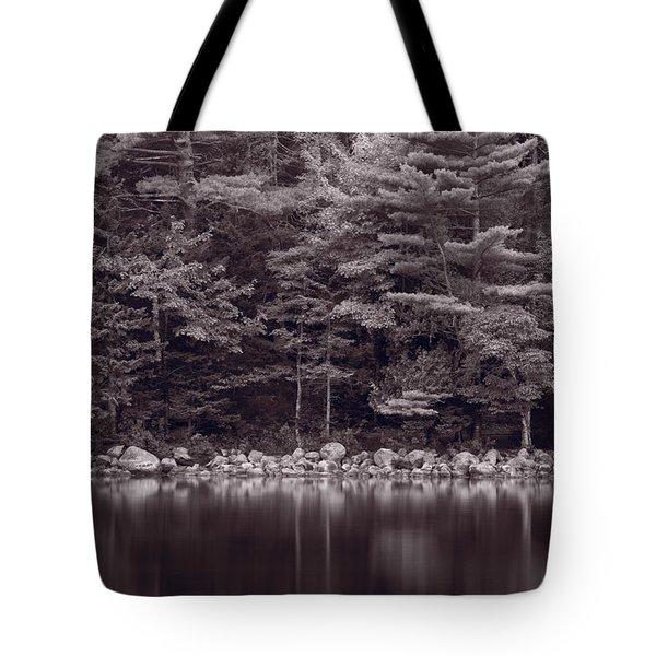 Forest At Jordan Pond Acadia Bw Tote Bag by Steve Gadomski