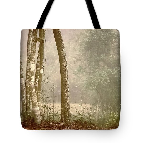 Forest In Fog Tote Bag by Robert Brown