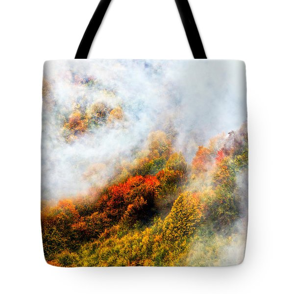 Forest In Veil Of Mists Tote Bag by Evgeni Dinev