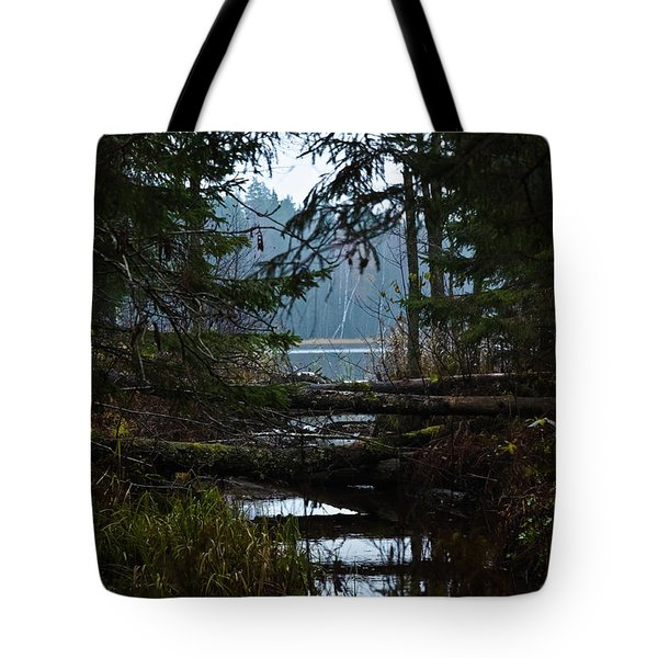 Tote Bag featuring the photograph Forest Lake by Michael Goyberg