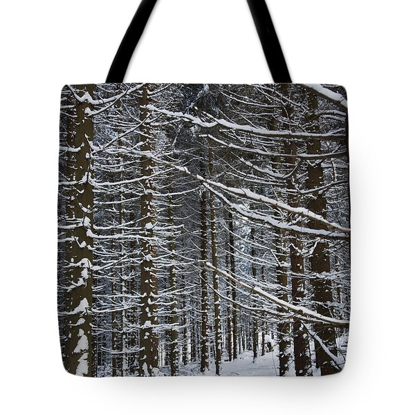 Forest Of Marburg In Winter Tote Bag by Axiom Photographic