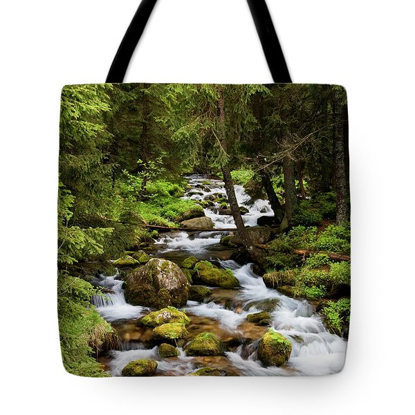 Forest Stream In Tatra Mountains Tote Bag by Artur Bogacki
