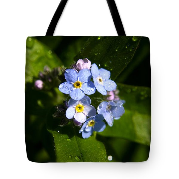 Forget Me Not Tote Bag by Ralph A  Ledergerber-Photography