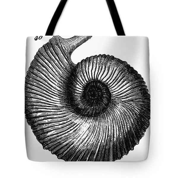 Fossil: Cretaceous Period Tote Bag