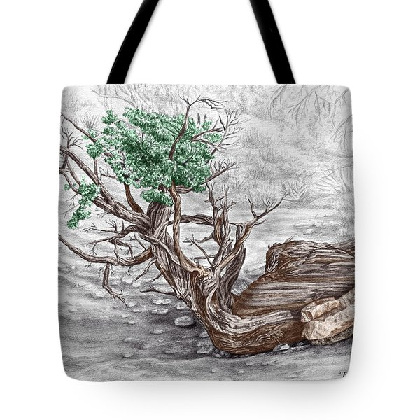 Found By Courthouse Butte - Color Tinted Print Tote Bag
