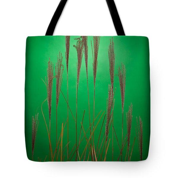 Fountain Grass In Green Tote Bag by Steve Gadomski