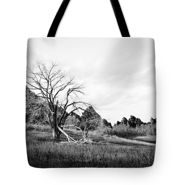 Fountain Valley In Black And White Tote Bag