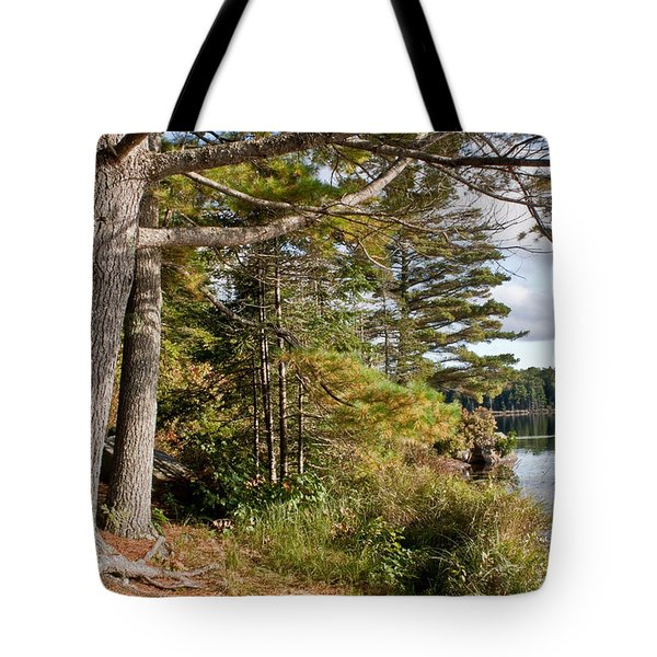 Tote Bag featuring the photograph Fourth Pond by Greg DeBeck