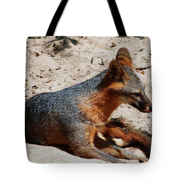 Tote Bag featuring the photograph Foxie by Debra Forand