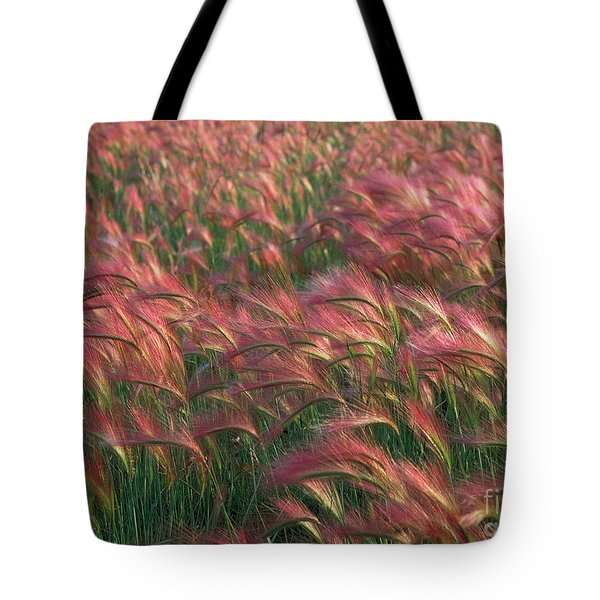 Tote Bag featuring the photograph Foxtail Barley by Doug Herr