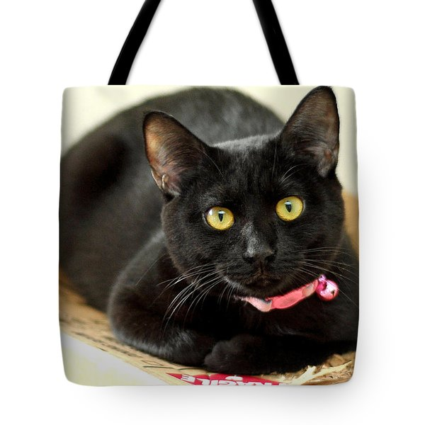 Fragile Mimi Tote Bag by Lisa Phillips