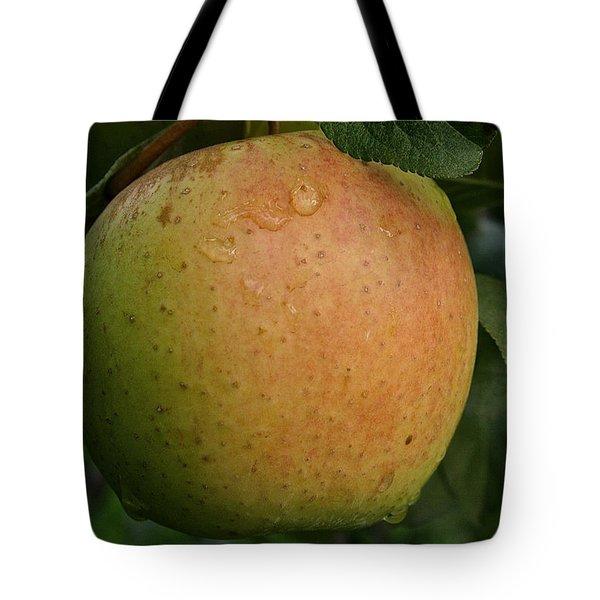 Fresh Apple Tote Bag by Susan Herber