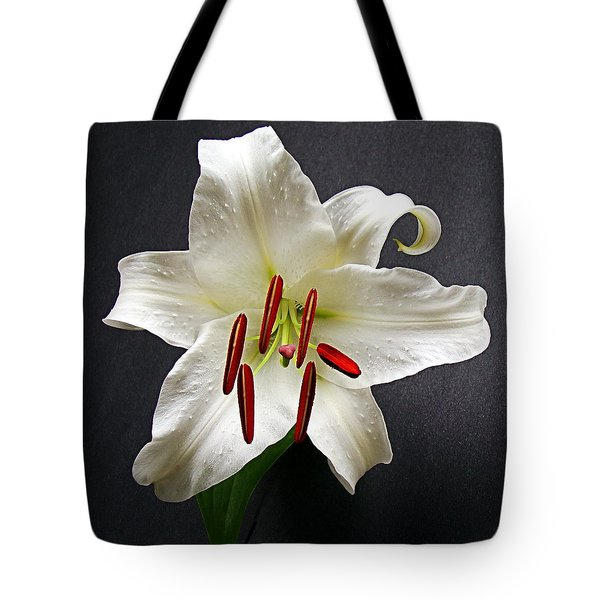 Tote Bag featuring the photograph Fresh At Daybreak by Nick Kloepping