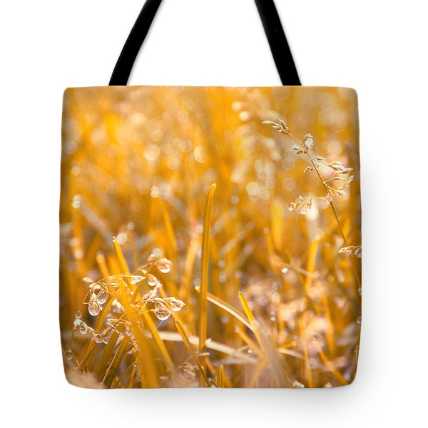 Freshness Tote Bag by Aimelle