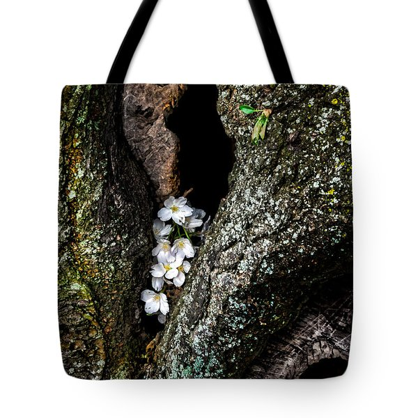 From The Heart Tote Bag by Christopher Holmes