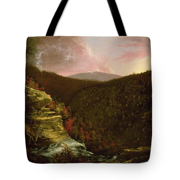 From The Top Of Kaaterskill Falls Tote Bag