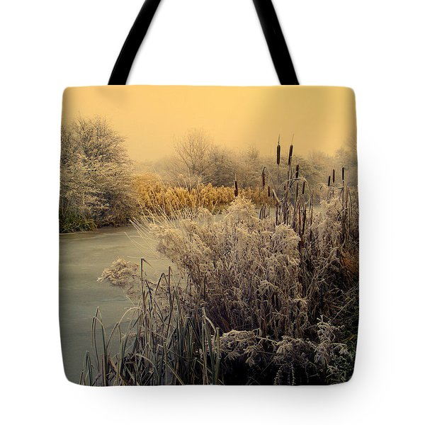Frost Tote Bag by Linsey Williams