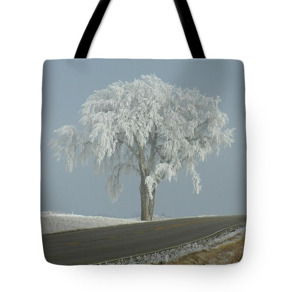 Tote Bag featuring the photograph Frost On The Big Tree  by Penny Meyers