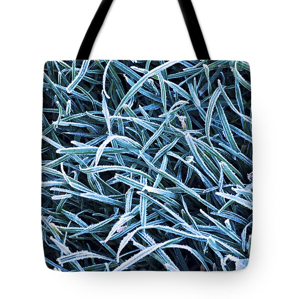 Frosty Grass Tote Bag by Elena Elisseeva