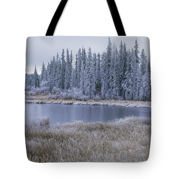 Frozen Swampland, Near 100 Mile House Tote Bag by David Nunuk