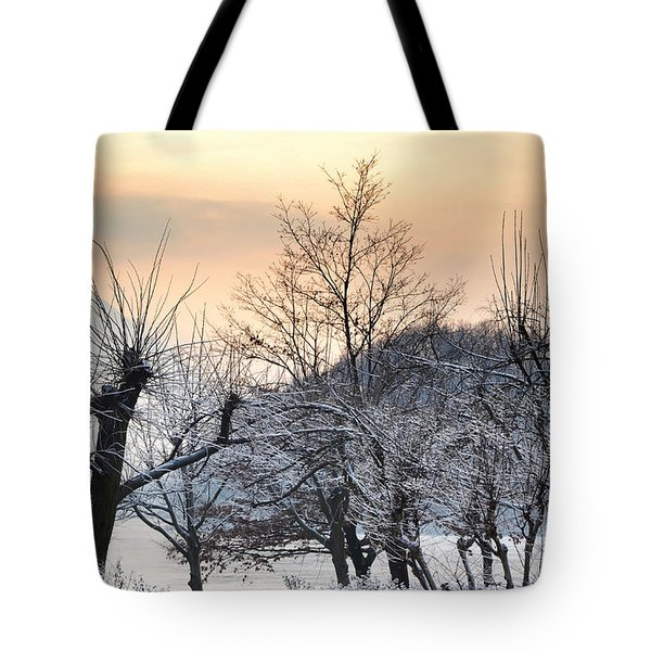 Frozen Trees Tote Bag by Mats Silvan