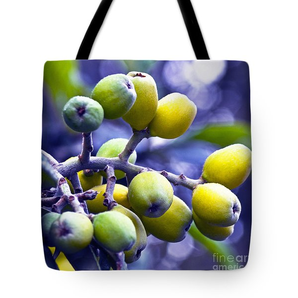 Tote Bag featuring the photograph Sicilian Fruits by Silva Wischeropp