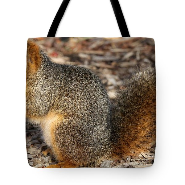 Tote Bag featuring the photograph Fruity Squirel by Elizabeth Winter