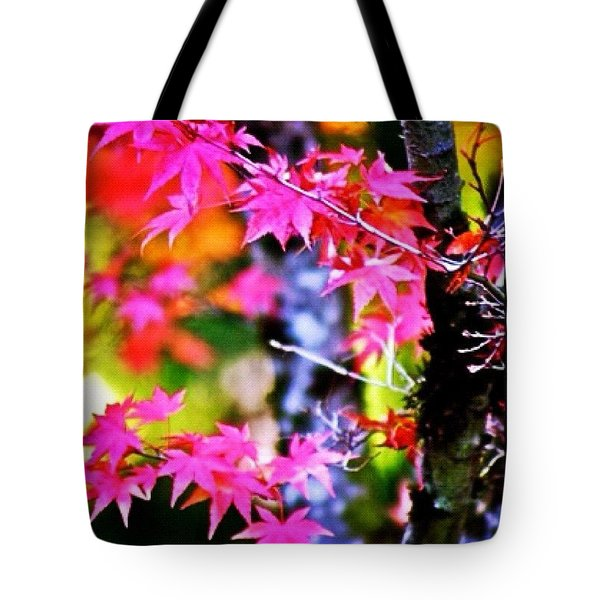 Fuchsia And Orange Maple Leaves Tote Bag
