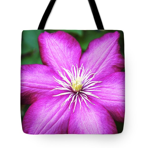 Full On  Tote Bag by Bob and Nancy Kendrick