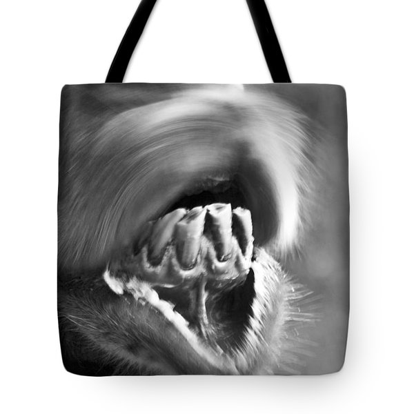 Funny Camel Tote Bag by Heiko Koehrer-Wagner