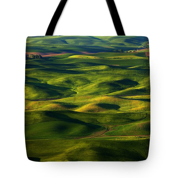 Furrows And Folds Tote Bag by Mike  Dawson