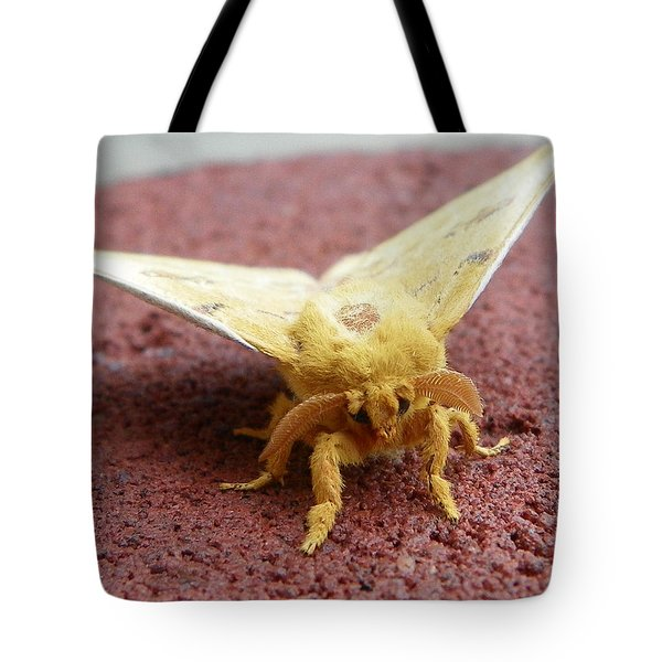 Furry Moth Tote Bag by Chad and Stacey Hall