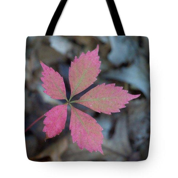 Fushia Leaf 2 Tote Bag by Douglas Barnett
