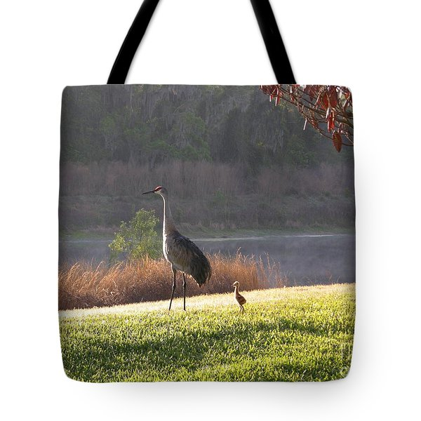 Future Lookout  Tote Bag