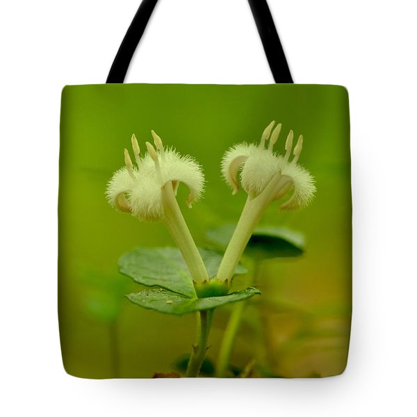 Tote Bag featuring the photograph Fuzzy Blooms by JD Grimes