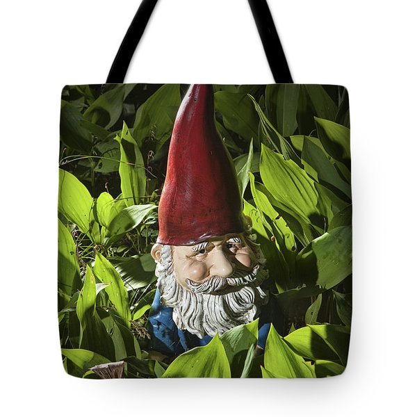 Garden Gnome No 0065 Tote Bag by Randall Nyhof